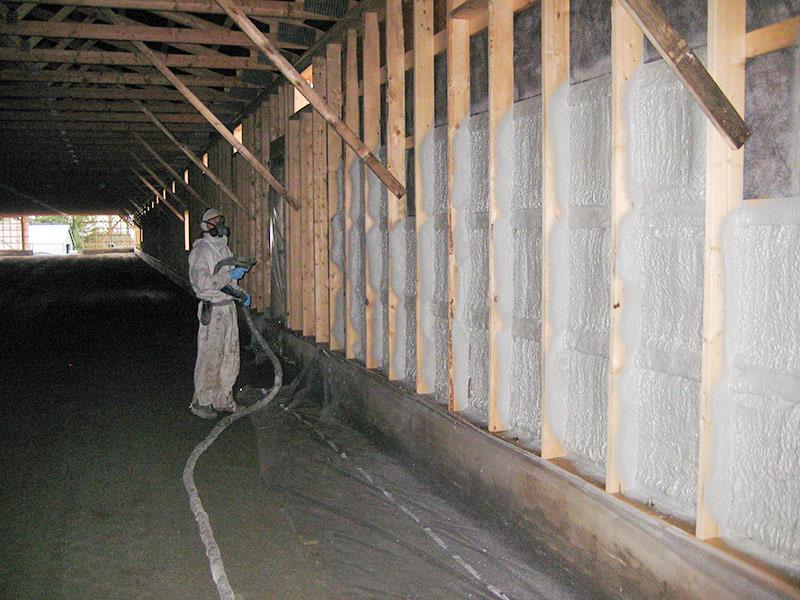 Element Spray Foam - Chicken Barn Agricultural